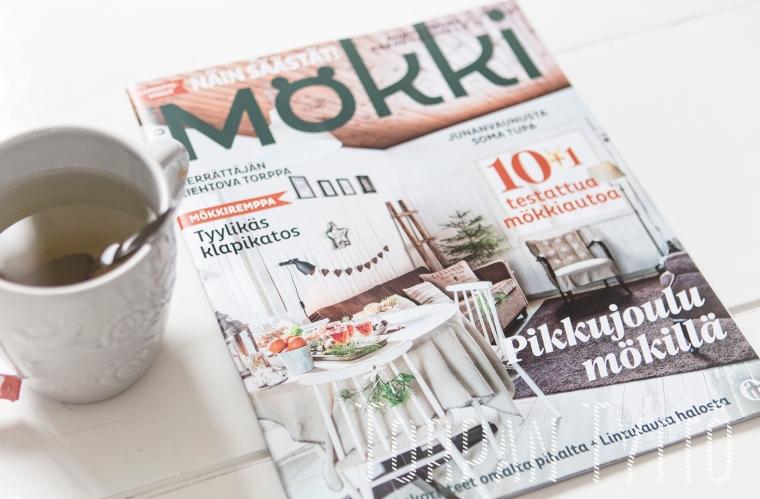 meidan-mokki_torpan-tytto-lehtijuttu
