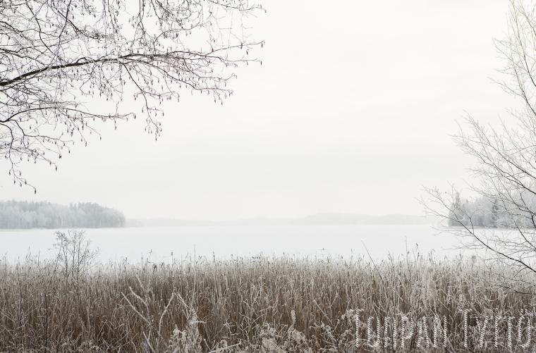 jarvi-talvi